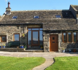 Glass Barn Door and Windows