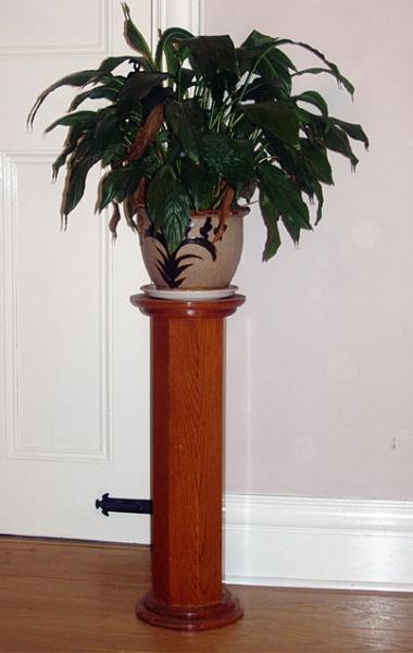 Oak plant stand